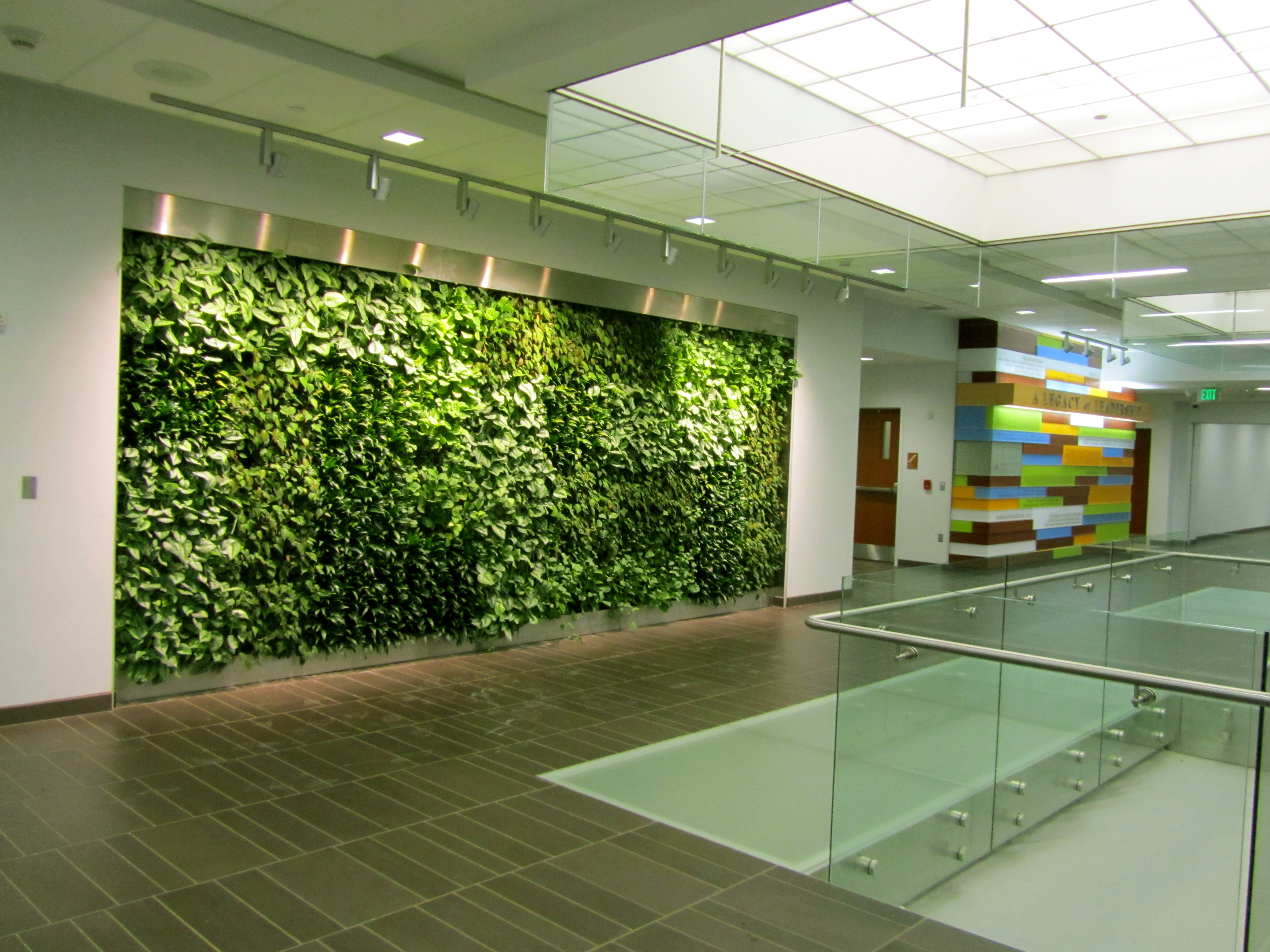 Living Green Wall Welcome To The Green Wall Source